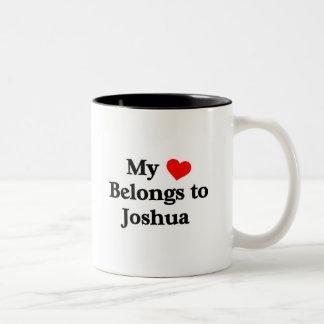 Mon coeur appartient à Joshua Tasse