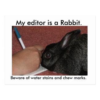 Mon rédacteur est un lapin cartes postales