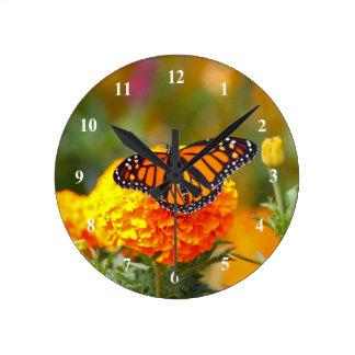 Monarque sur une horloge de souci