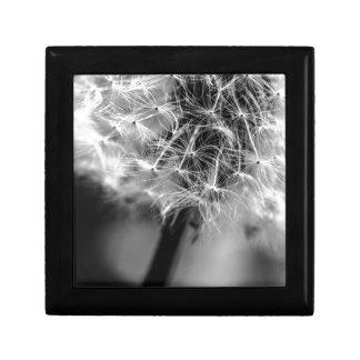 Monochrome de pissenlit petite boîte à bijoux carrée