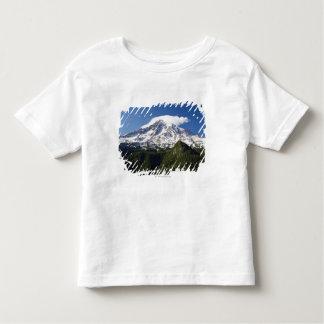 Montagne couverte par neige avec le ciel bleu et t-shirts