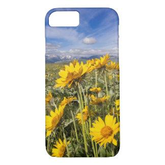 Montagne rocheuse Front Range Coque iPhone 7