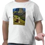 Montagnes du Pérou, les Andes, les Andes, Machu Pi T-shirts