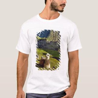 Montagnes du Pérou, les Andes, les Andes, Machu T-shirt
