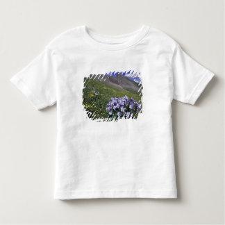 Montagnes et fleurs sauvages dans le pré alpin, t-shirt pour les tous petits