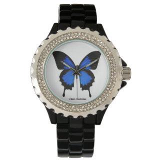 Montre bleue de papillon