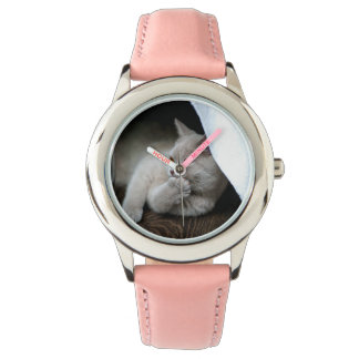 Montre Chat britannique - chat drôle - chat gris