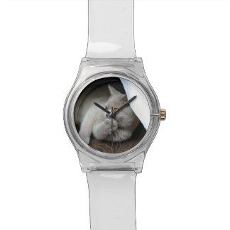 Montre Chat britannique - chat drôle - chat gris