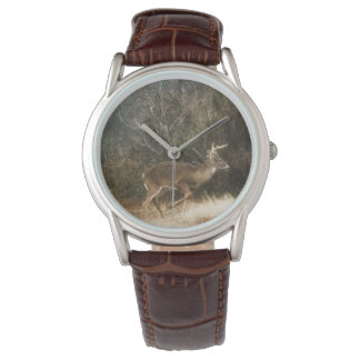 Montre de mâle de Whitetail