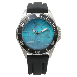montre de requin