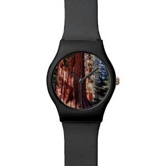 Montre de séquoia géant montres cadran