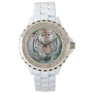 Montre de tigre montres cadran