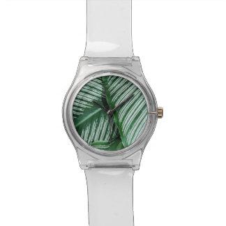 Montre Le feuille tropical vert avec le blanc barre le