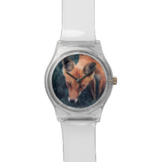 Montre Le Fox rouge