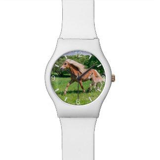 Montre Les poulains mignons de chevaux de Haflinger
