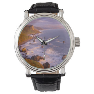 Montre Littoral de séquoias, la Californie