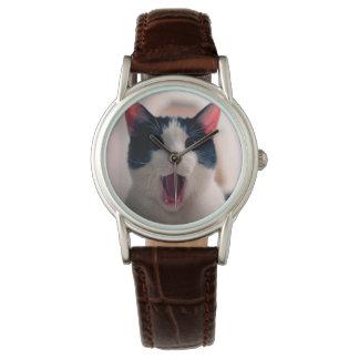 Montre Meme de chat - chat drôle - memes drôles de chat -