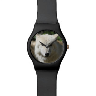 Montre Poly animaux - loup
