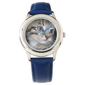 Montres Bracelet Chaton pelucheux gris observé par bleu,
