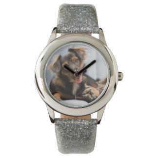 Montres Bracelet Chats et chiens - chien drôle - chats drôles