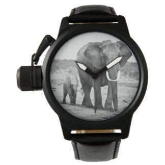 Montres Bracelet Éléphant africain et veaux   Kenya, Afrique