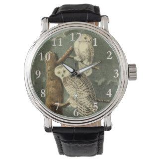 Montres Bracelet Illustration de cru de John James Audubon de hibou