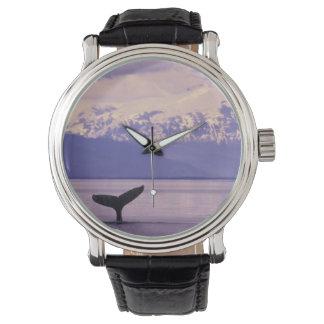 Montres Bracelet L'Amérique du Nord, Etats-Unis, Alaska, passage