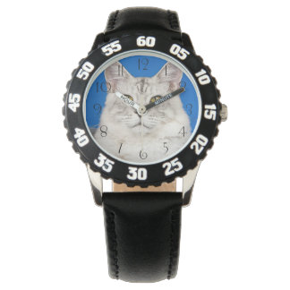 Montres Bracelet Maine-ragondin-chats