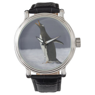Montres Bracelet Oiseau adulte de pingouin de Gentoo (Pygoscelis