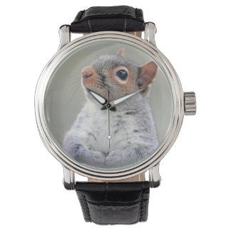 Montres Bracelet Photo curieuse mignonne de profil d'écureuil