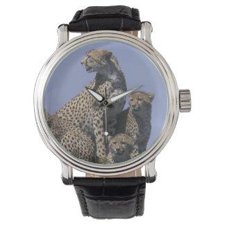 Montres Bracelet Réservation de jeu de l'Afrique, Kenya, Mara de