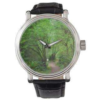 Montres Bracelet Traînée dans la forêt de séquoia