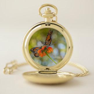 Montres De Poche Papillons de monarque sur des fleurs sauvages