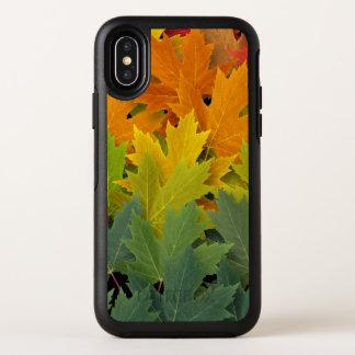 Motif 2 d'automne