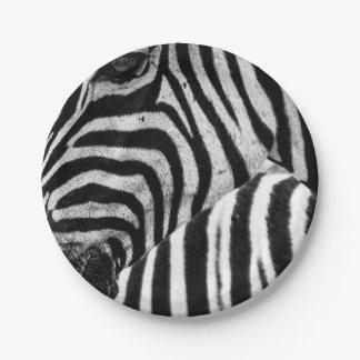 Motif blanc noir de rayures de zèbre assiettes en papier