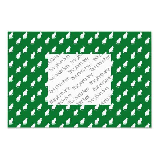Motif blanc vert mignon de chat photographies d'art