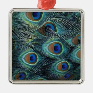 Motif dans les plumes masculines de paon ornement carré argenté