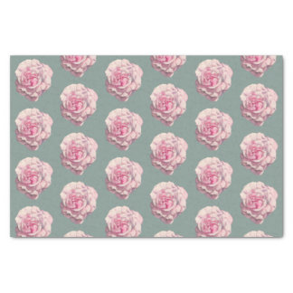 Motif d'illustration d'aquarelle de rose de rose papier mousseline