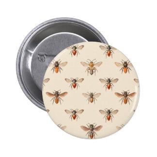 Motif vintage d'illustration d'abeille badges