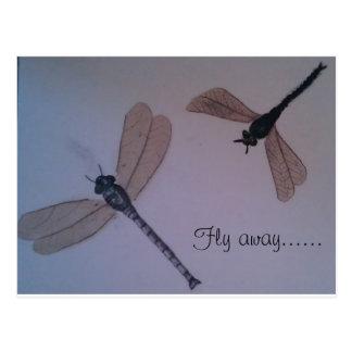 Mouche de libellules… loin carte postale