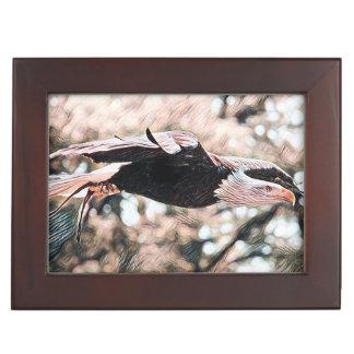 Mouche d'Eagle chauve comme Eagle Boîte À Souvenirs