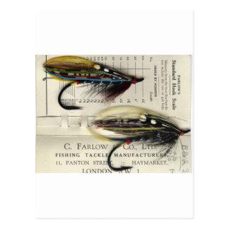 Mouche saumonée classique sur la carte carte postale