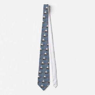 Mouette à tête noire étée perché sur courrier cravates