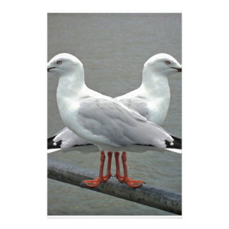 Mouette-capable Papeterie