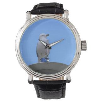 Mouette - montre