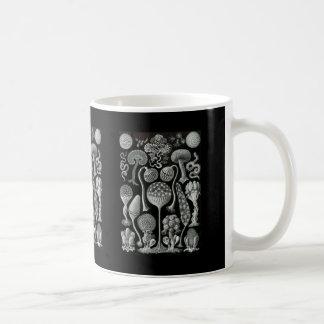 Moules de boue mug