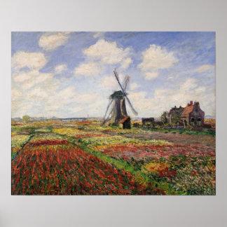 Moulin à vent de Rijnsburg de champs de tulipe de Poster
