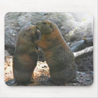 Mousepad avec les couples mignons de marmotte tapis de souris