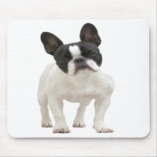 Mousepad de photo de bouledogue français, idée de  tapis de souris