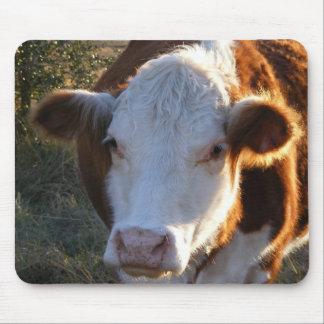 Mousepad de vache : Brouillé Tapis De Souris